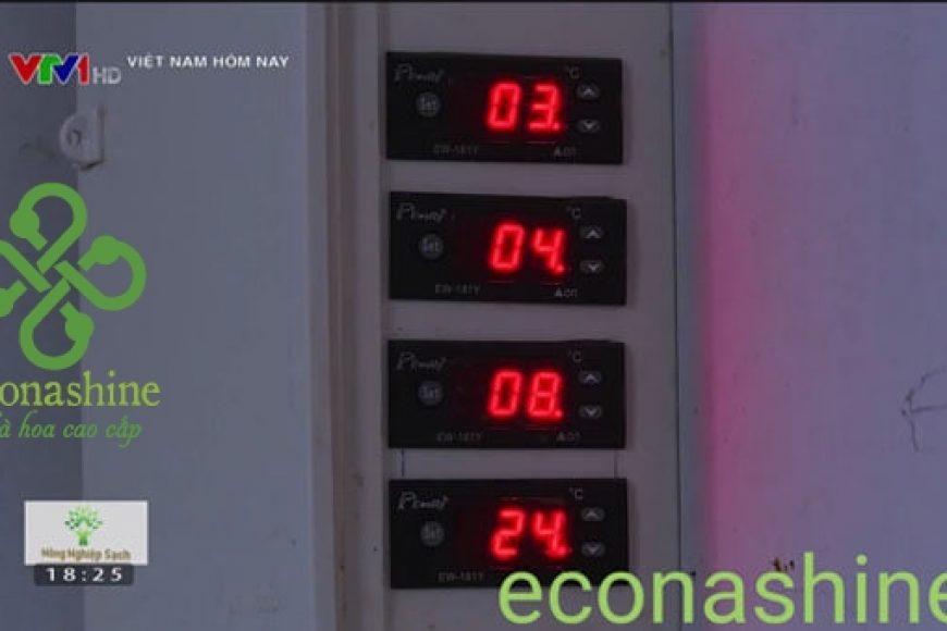 Công nghệ sấy lạnh là gì? Giới thiệu về sấy lạnh