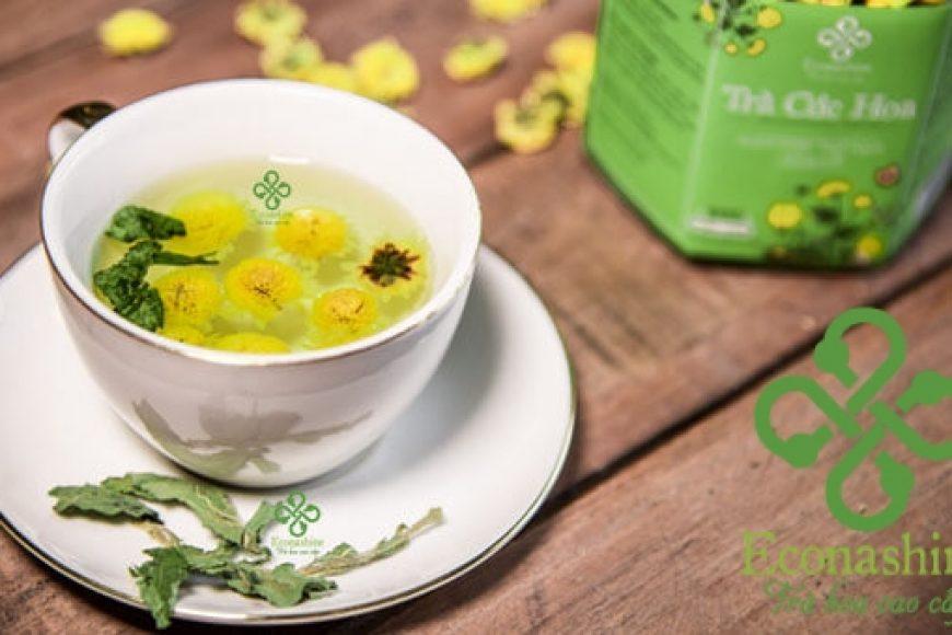 Mua trà hoa Cúc ở đâu chất lượng tốt nhất