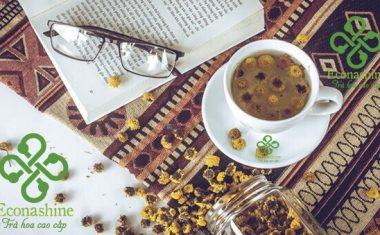 Những ai không nên uống trà hoa cúc?